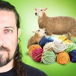 A verdade sobre a produção de lã