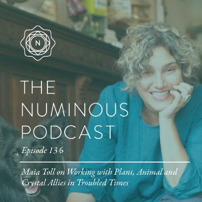 TNP136: Maia Toll on Working with Plant, Animal and Crystal Allies in Troubled Times
