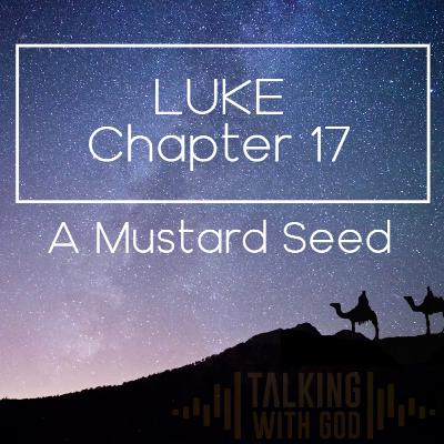 8 Days to Christmas - Luke Chapter 17 - A Mustard Seed