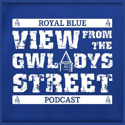 View from the Gwladys: Southampton, Digne, Iwobi & clean sheet woes