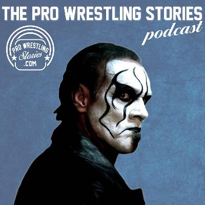 Sting - His Unlikely Journey to the WWE (And Where It All Went Wrong)