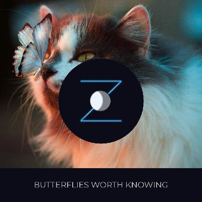 Butterflies Worth Knowing