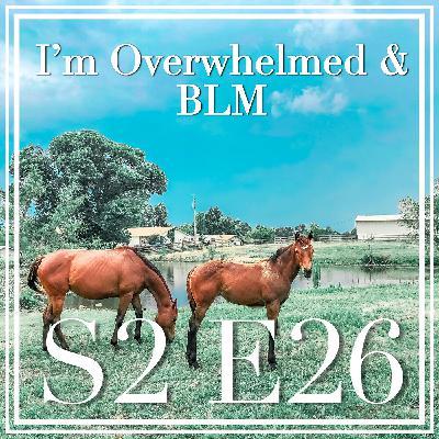 26 || I'm Overwhelmed & BLM