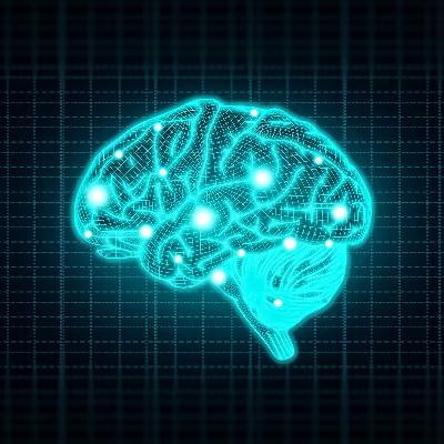Unplug&Boost Byte #01:het  functioneren van de hersenen