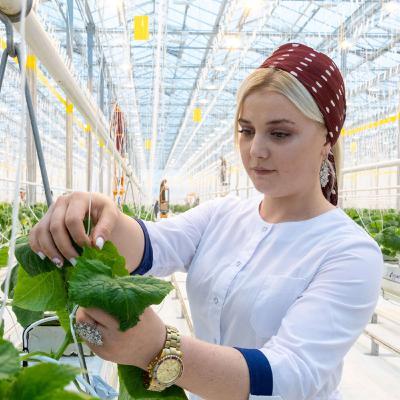 Аграрные атташе: сельское хозяйство международного уровня. Как в МГИМО готовят специалистов для мировых аграрных рынков