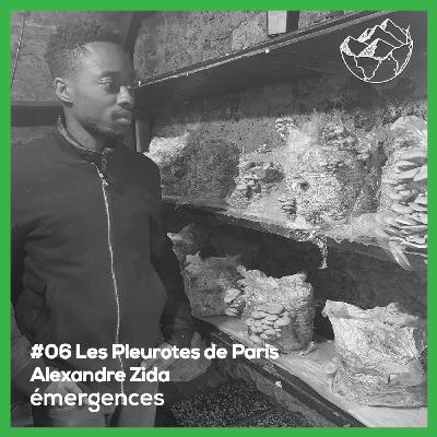 Emergences#06 - Alexandre Zida - Les Pleurotes de Paris - Du marc recyclé à la production de champignons