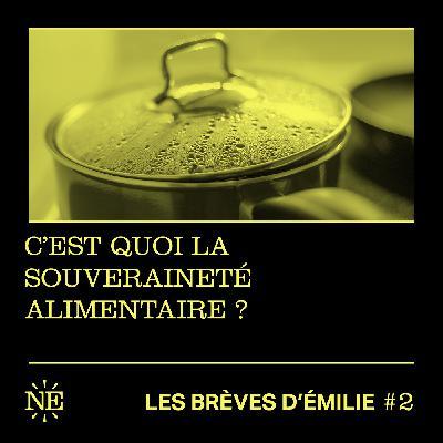 Les Brèves d'Émilie - C'est quoi la souveraineté alimentaire ? (#2)