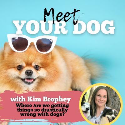 Meet Your Dog!
