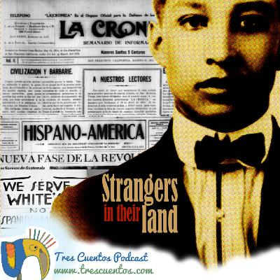 31 - Strangers in their land - Latinx Literatures in US