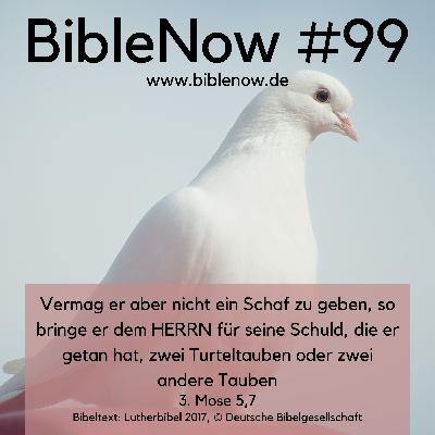 BibleNow #99: 3. Mose 4,22-5,13