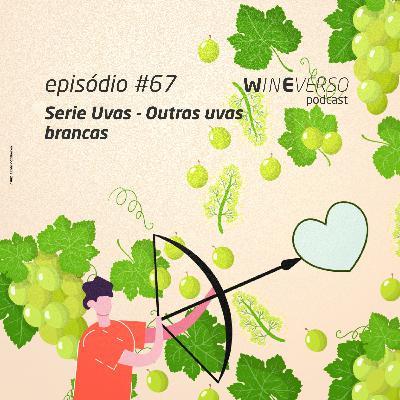 Série uvas: Outras uvas brancas