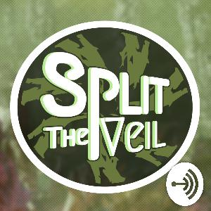 Split the Veil 22: Even More DAI Decisions!