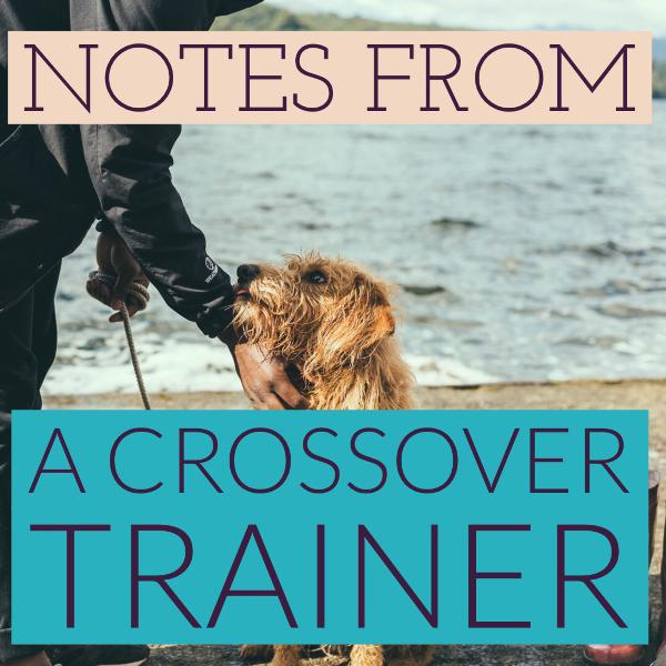 Notes from a Crossover Trainer