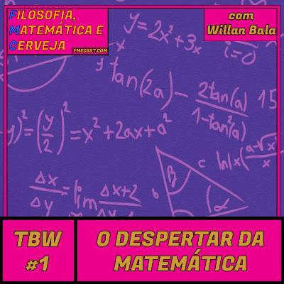 TBW 1 - O despertar da Matemática