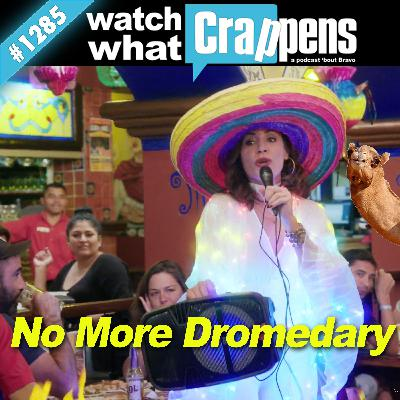 RHONY: No More Dromedary