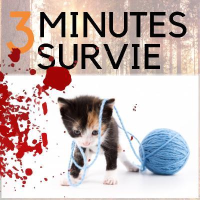 🐈 Comment faire un garrot et sauver une vie (ou ton chat)