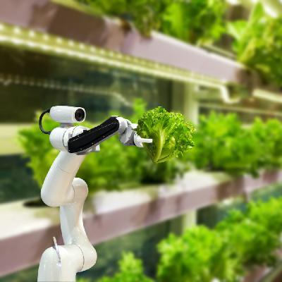 Post-Coronavirus Musings Part I: Artificial Intelligence and Food