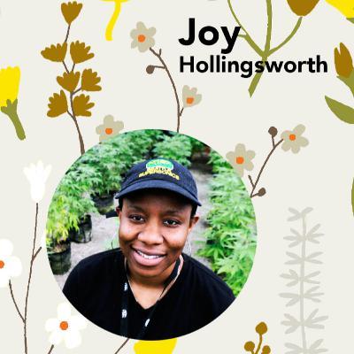 Ep. 32 - Cannabis Hollingsworth Farm with Joy Hollingsworth