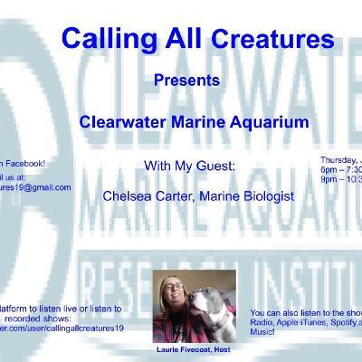 Calling All Creatures Presents Clearwater Marine Aquarium