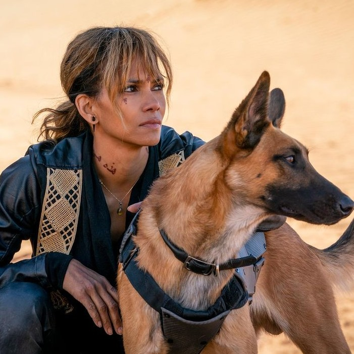Women Who Kick Ass: Halle Berry in John Wick 3