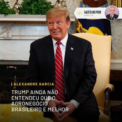 Trump ainda não entendeu que o agronegócio brasileiro é melhor