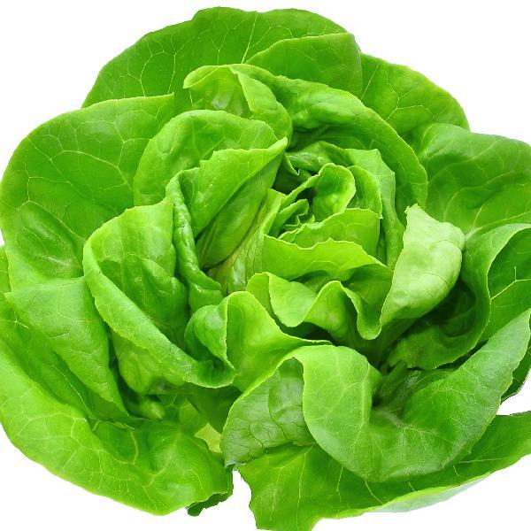 Power Of Leafy Greens
