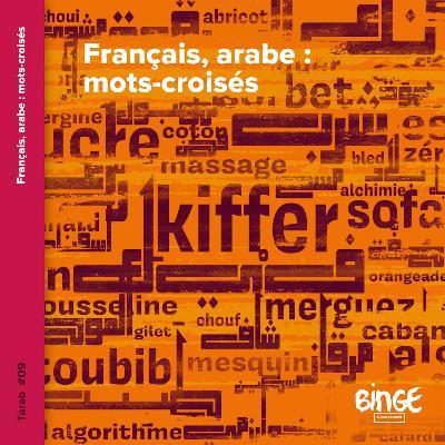 Français, arabe : mots-croisés