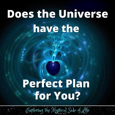 Does the Universe have the Perfect Plan for You?