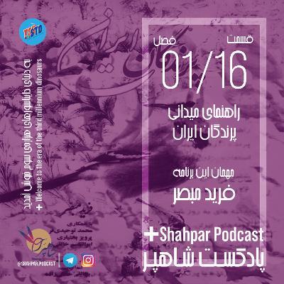 فصل اول - قسمت شانزدهم - راهنمای میدانی پرندگان ایران