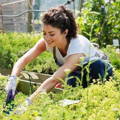 Sacred Gardens - Gardening for Meditation