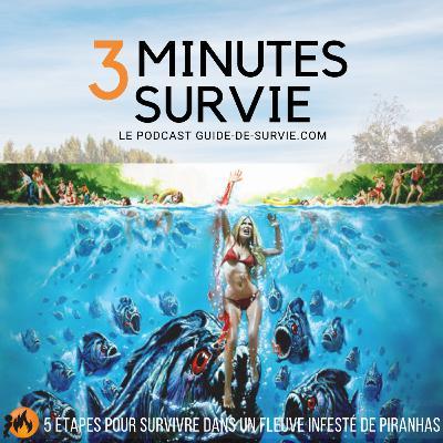 🐟 5 étapes pour survivre dans un fleuve infesté de piranhas