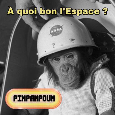 #29.4 - À quoi bon l'Espace ? - SOS à l'ISS