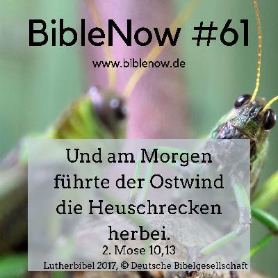 BibleNow #61: 2. Mose 9,22-10,29