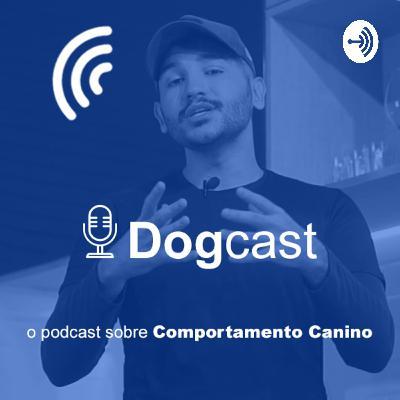 Posso dormir com meu cachorro na cama?   Dogcast #009