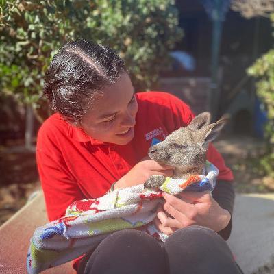 Charlotte, une maman Kangourou française en Australie
