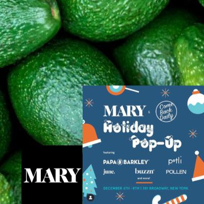 MARY Presents Conscious Living, Plant Wellness, and Community @The Holiday Pop Up