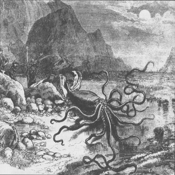 14: NewfoundPod Episode 14 - The Giant Squid of Newfoundland