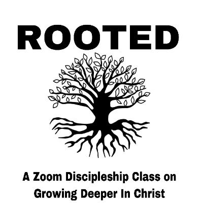Rooted: Christology Pt. 1