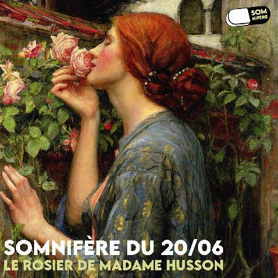 Somnifère du 20/06 – Le Rosier de madame Husson