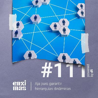 ENZIMAS #111 - Aja para garantir hierarquias dinâmicas
