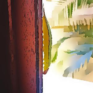 15. A lagarta na janela - sobre confiança na vida
