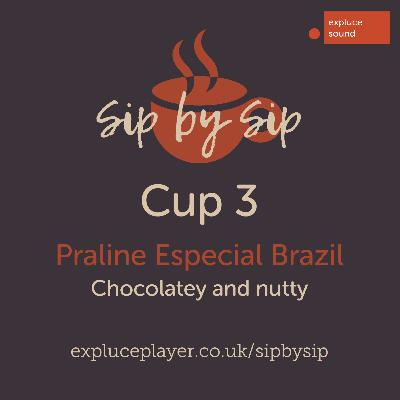 Cup 3, Praline Especial Brazil: Chocolatey and nutty