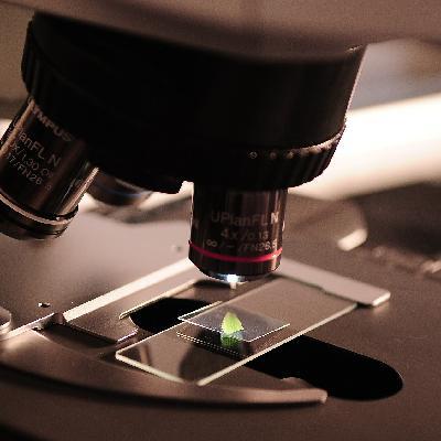 A importância da ciência no momento da crise do coronavírus