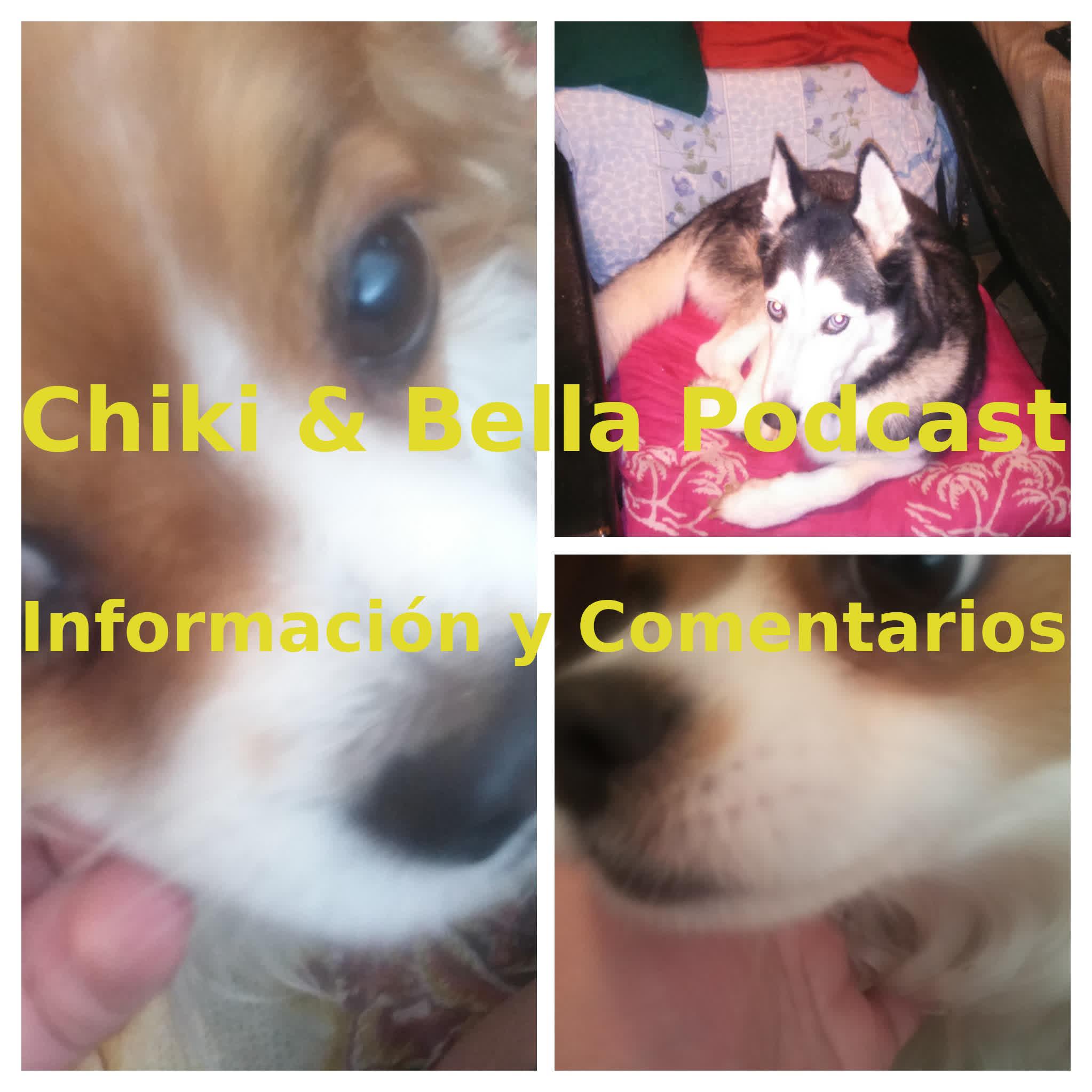 Chiki & Bella Podcast - Información y Comentarios