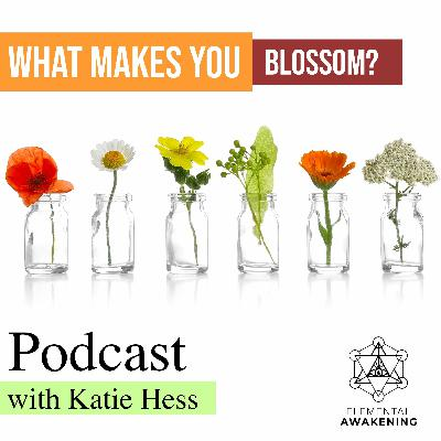 EA Ep.50 - The healing power of flowers & Why flower elixirs can make you blossom With Katie Hess