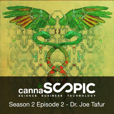 Dr. Joe Tafur - Psychedelics, epigenetics and  trauma.  What do we know from science and practice?