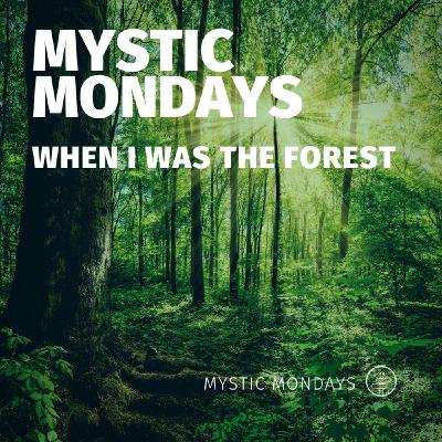 Mystic Mondays | When I Was The Forest