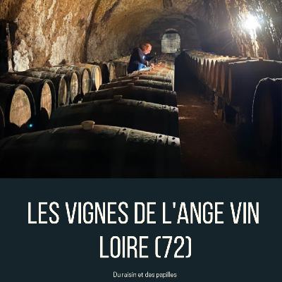 Episode 29: Les vignes de l'Ange vin à Chahaignes (72)