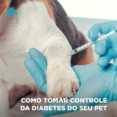 #58: Como Tomar Controle da Diabetes do seu Pet