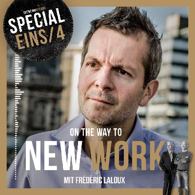 """#261 mit Frédéric Laloux, author """"Reinventing Organizations"""", experimenting life without a job identity"""